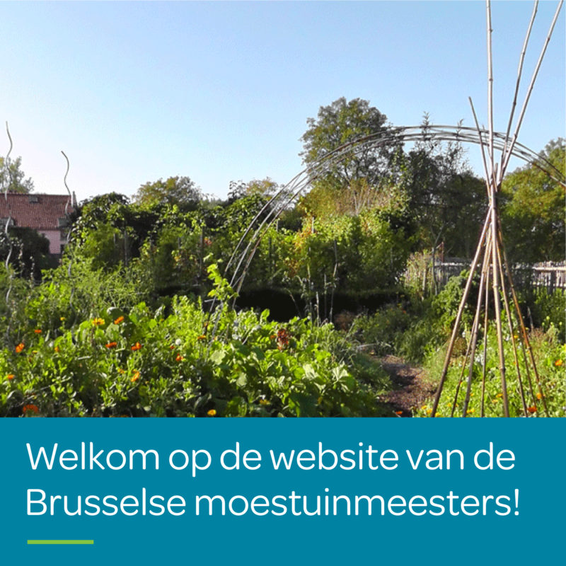 Photo accueil, welcome op website